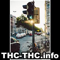 thc-thc, informacje, marihuana, ciekawe