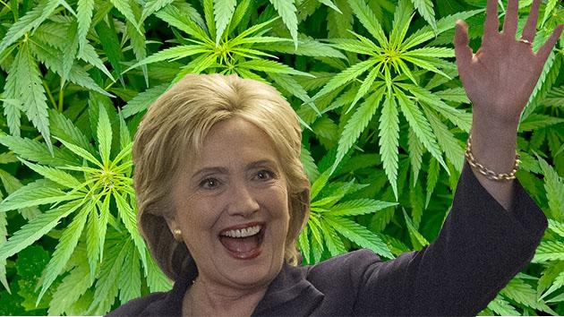 Hillary Clinton domaga się przekwalifikowania marihuany przez FBI, thc thc.info