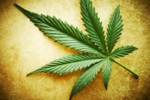 Dolegliwości, które leczone są medyczną marihuaną, thc thc.info