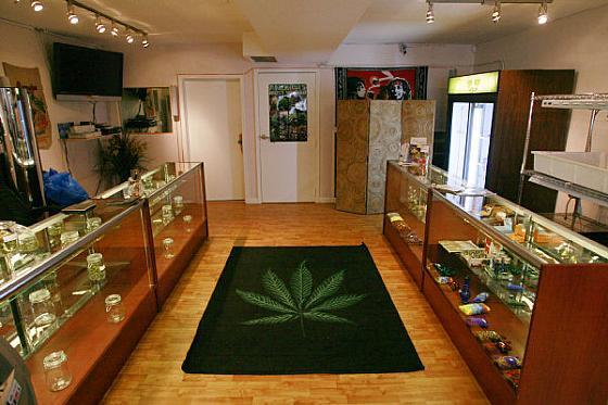 Przewodnik po medycznej marihuanie w Kanadzie, thc thc.info