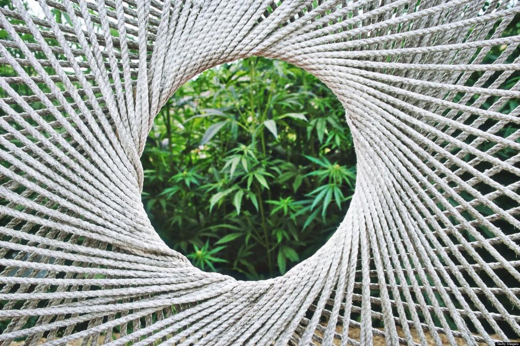 Najmniej ryzykowny narkotyk rekreacyjny, thc thc.info