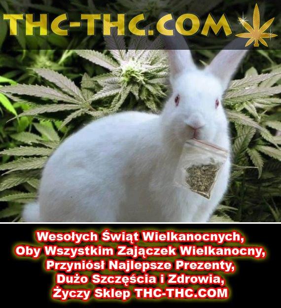 Wesołych Świąt Wielkanocnych, Życzy THC THC, thc thc.info