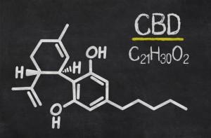 cbd-zdjecie-pierwiastek-marihuana