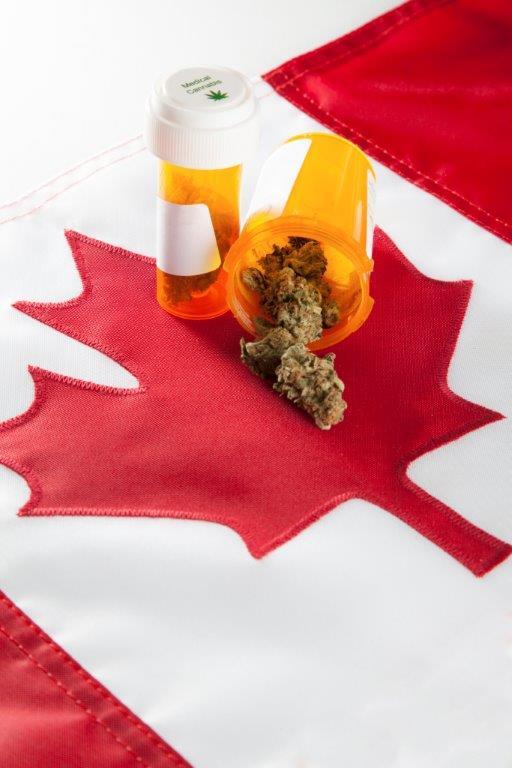 Kanada: Stosowanie medycznej marihuany wśród weteranów wzrasta, thc thc.info