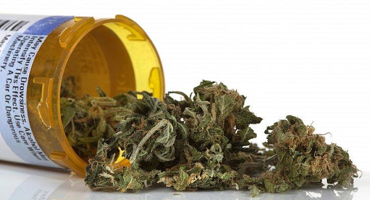 Marihuana jest lekiem jak każdy inny, thc thc.info