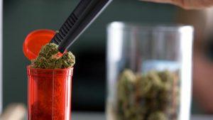 marihuana-w-pojemniku-szczelnie-zamknieta