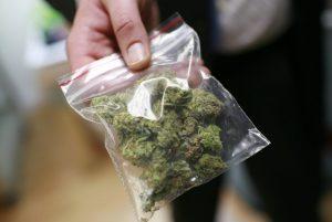 Analiza ekonomiczna medycznej marihuany w Australii, thc thc.info