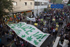 medyczna-marihuana-legalizacja-zwolennicy-medycznej-marihuany