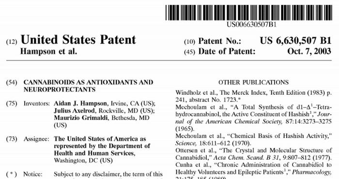 Czy rząd USA posiada patent na marihuanę?, thc thc.info