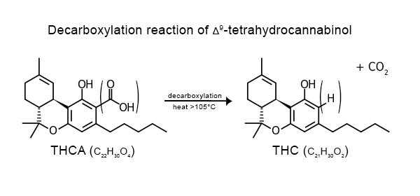 Kilka informacji na temat THC, thc thc.info