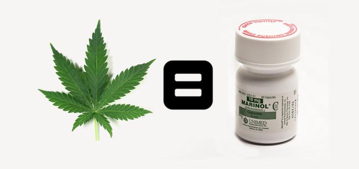 Farmaceutyczny cannabis powoduje podobne uczucie haju, co naturalny, thc thc.info