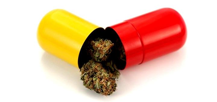 Marihuana osłabia objawy ADHD, thc thc.info