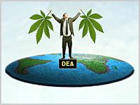 Marihuana to taka sama substancja jak heroina?, thc thc.info