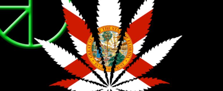 Progres na Florydzie, thc thc.info