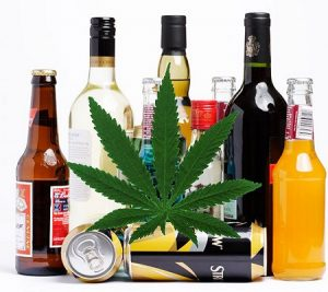 Marihuana i alkohol   badania, thc thc.info