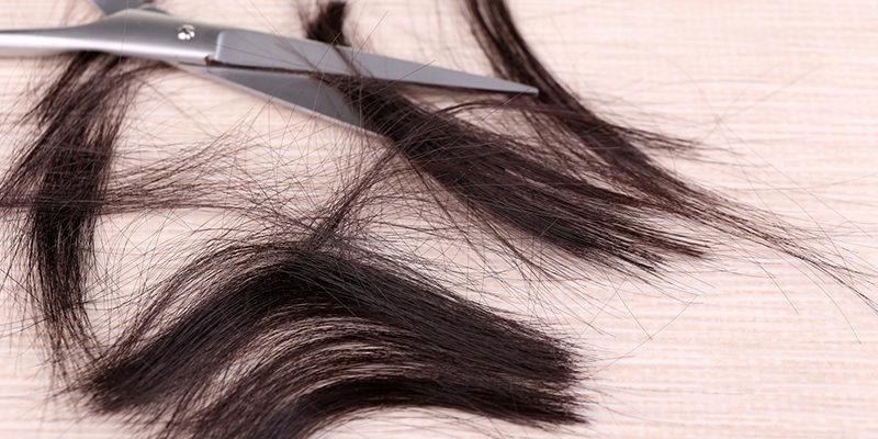 Badanie Włosów Pod Kątem Marihuany, thc thc.info