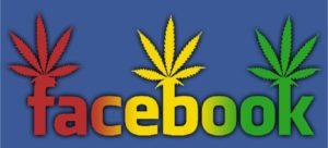 Wątki o marihuanie na Facebooku, thc thc.info