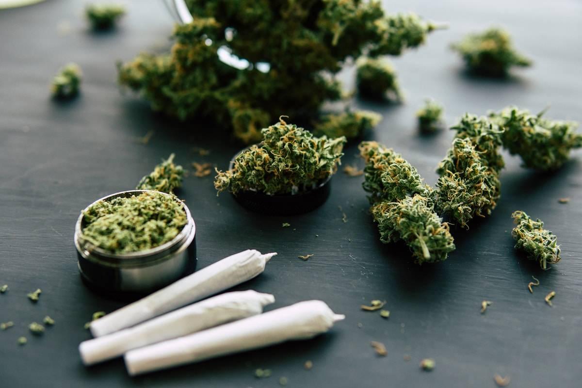Najlepsze Nasiona Marihuany na Zabicie Nudy, thc thc.info