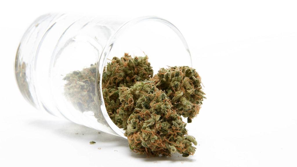 Cannabis jako alternatywa dla leków przeciwlękowych, thc thc.info
