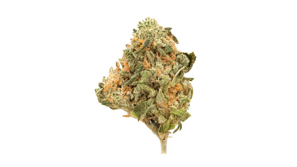 Jak to jest konsumować cannabis?, thc thc.info