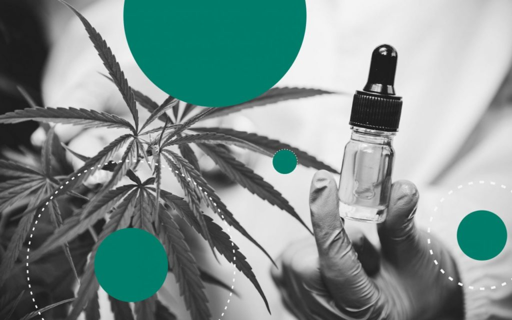 4 główne rodzaje produktów zastosowania miejscowego z cannabis, thc thc.info