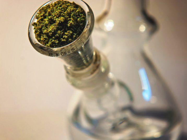 Cannabis i koronawirus: co musisz wiedzieć, thc thc.info