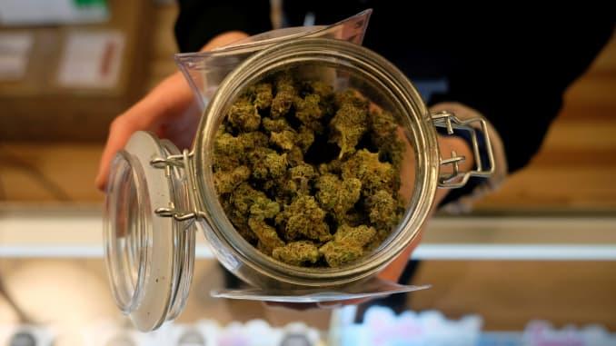 Koronawirus i Cannabis: Co Na To Eksperci, thc thc.info