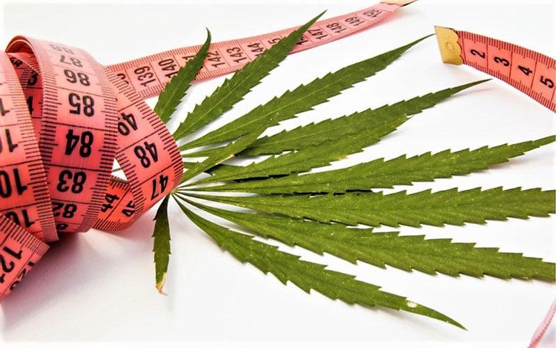 Korzyści zdrowotne płynące ze stosowania medycznej marihuany, thc thc.info
