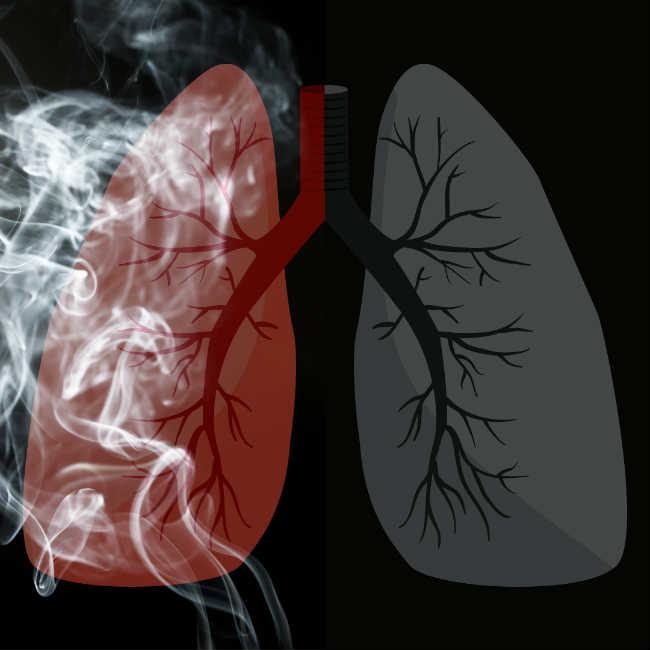 Czy CBD Może Pomóc Ci Rzucić Palenie?, thc thc.info
