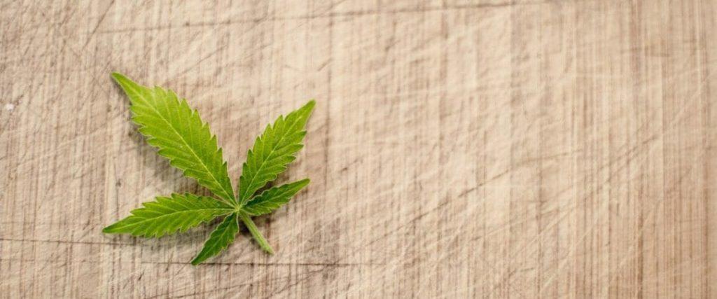 Co Mówi o Tobie Twoja Ulubiona Odmiana Marihuany, thc thc.info