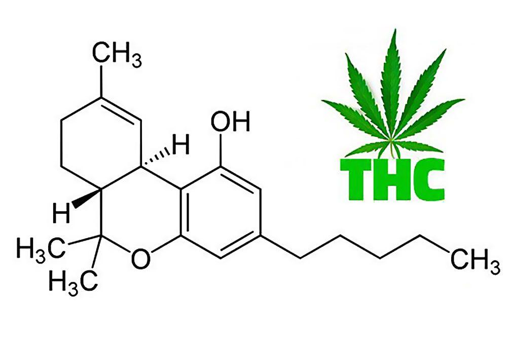 Czym jest THC?, thc thc.info