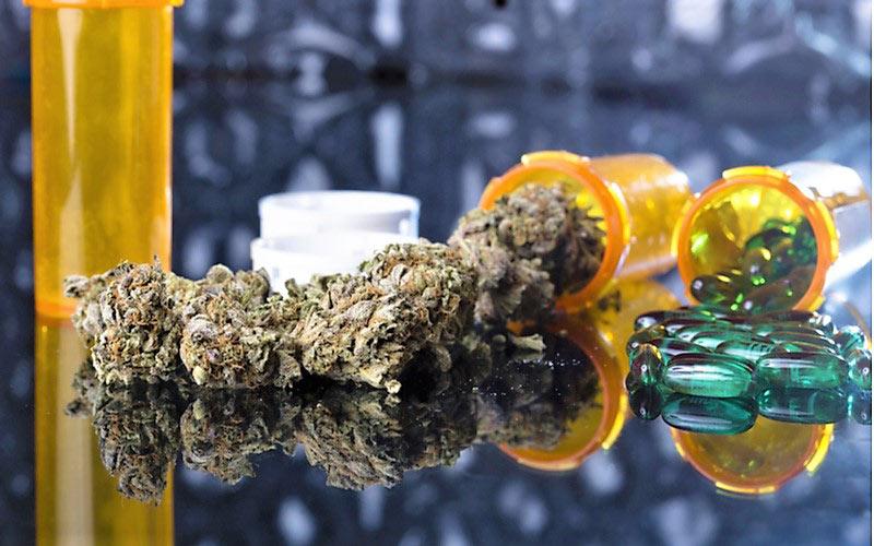 Popularność Używania Marihuany Wśród Seniorów, thc thc.info